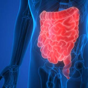 Gut permeability plays key role in functional gastrointestinal disorders