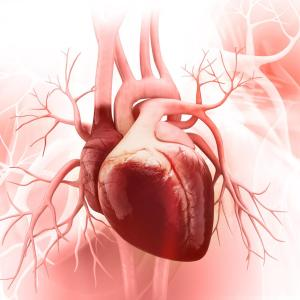 Lupus myocarditis may be first sign of SLE, but long-term outcome stays positive