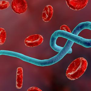 Ebola vaccine highly protective in outbreak setting