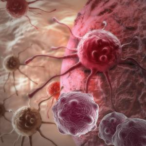 Aromatase inhibitors not linked to elevated colorectal cancer risk