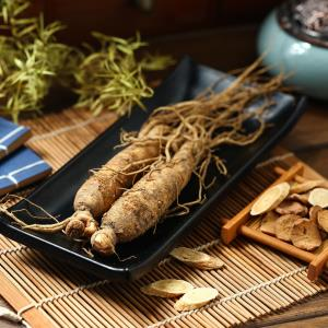 Ginseng, α-cyclodextrin of no help for glycaemic, cholesterol control