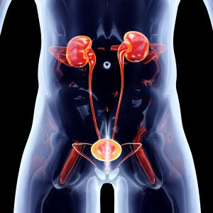 Conservative management trumps early urinary tract drainage in non-penetrating renal trauma
