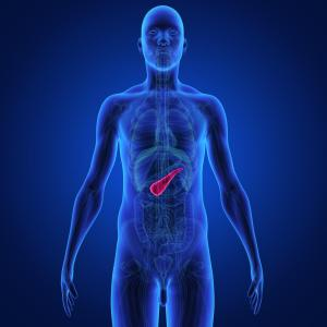 Pancreatic fat volume may predict deterioration of beta cell function in type 2 diabetics