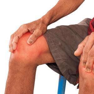 Higher fibre intake helps reduce symptomatic osteoarthritis risk