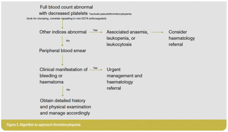 Figure3_Algorithm to approach thrombocytopenia