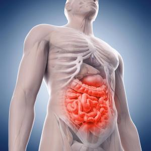 Primary sclerosing cholangitis cuts survival in IBD patients