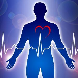 Heart fat tied to coronary artery spasms