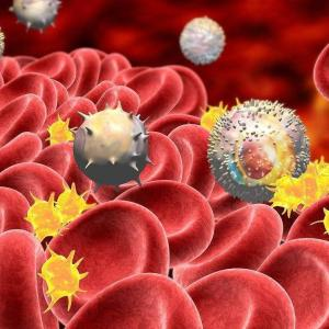 Eltrombopag proven effective in chronic, persistent immune thrombocytopaenia