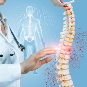 Sarcopaenia tied to BMD, osteoporosis in T2DM