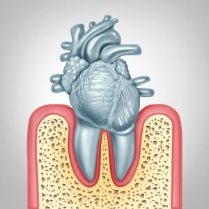 The mouth: A gateway to heart disease?
