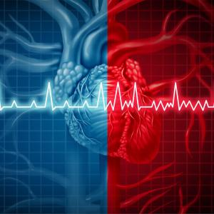Anticoagulants yield survival gains in Asians