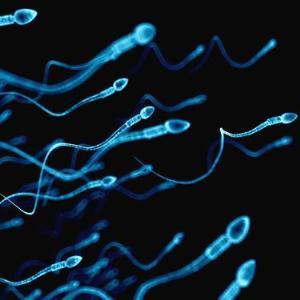 HPV infection spoils semen quality