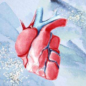 Empagliflozin reduces CV death, HF hospitalization in HFrEF patients