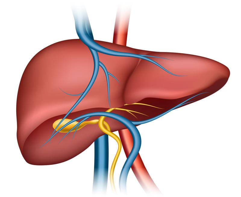 Liver iron levels normal in dysmetabolic hyperferritinemia patients ...