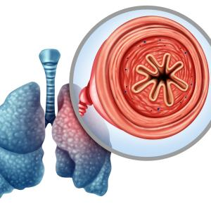MV130 immunotherapy prevents COPD exacerbations