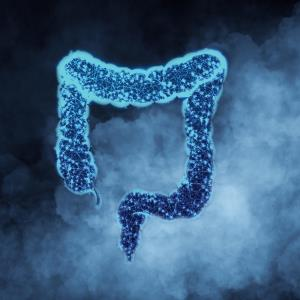 Smoking effect on colorectal neoplasia risk may vary by IBD type