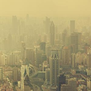Air pollution ruins health in the very young