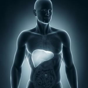 Repeat FIB-4 tests boosts predictive ability for severe liver disease