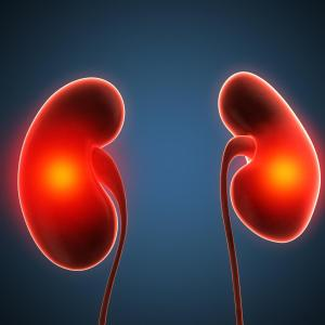 Death, CV risks increase with reduced renal function in diabetics