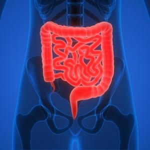Increased gastric juice secretion may induce hiatal hernia