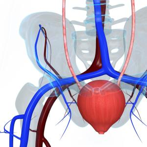 Lower urinary tract syndrome prevalent in systemic sclerosis