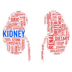 Poor access to food linked to ESRD development in low-income CKD patients