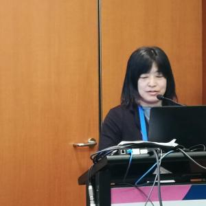 Cancer prevention programmes should be tailored to individual countries: A Japanese perspective