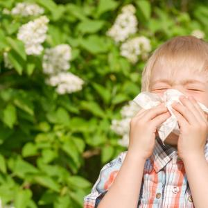 Oral prednisolone strikes out in children with acute wheeze