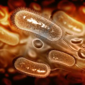 Adjuvant simvastatin may improve H. pylori eradication with triple therapy
