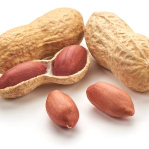 Eating peanuts may prevent stroke, CVD in Asians