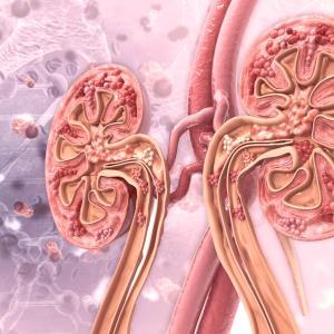 Lenvatinib + pembrolizumab shows CLEAR survival benefit over sunitinib in advanced RCC