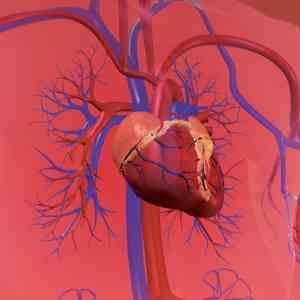 《MIMS心血管疾病用药指南》2019版已经推出