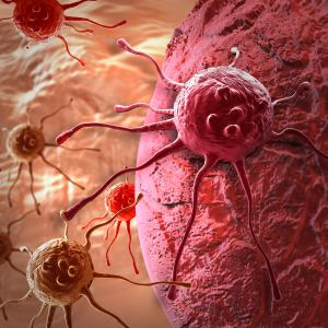 Tislelizumab + chemo exhibits favourable tolerability for gastric cancer, oesophageal SCC