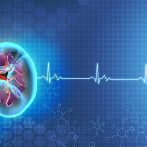 Glomerular disease tied to increased CVD risk