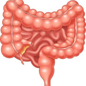 The Role of General Practitioners in Early Detection of Inflammatory Bowel Disease