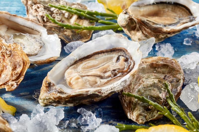 Sea food and sex