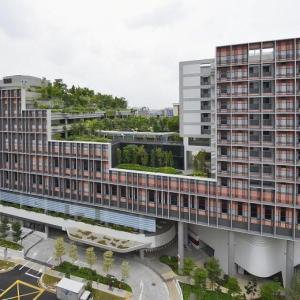 Singapore identifies COVID-19 clusters to prevent virus spread