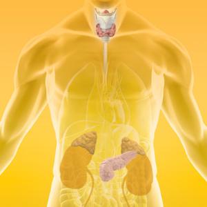 《MIMS内分泌与代谢疾病用药指南》2020版已经推出