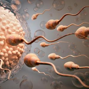 Survey says – there's little evidence of efficacy for fertility add-ons