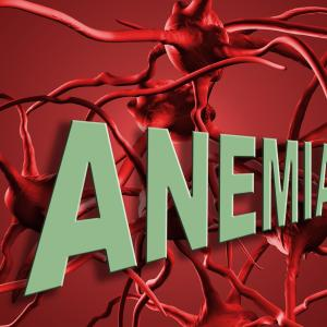 Maternal iron deficiency anaemia influences haematologic status during infancy