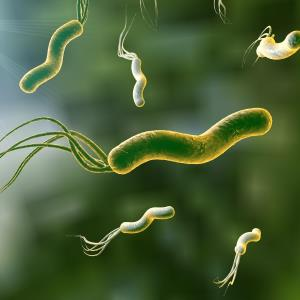 Rifabutin-based therapy a potential first-line H. pylori eradication regimen