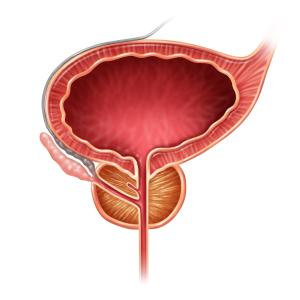 Bladder reservoir reduced during sleep in nocturnal enuresis