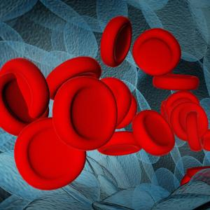 Ferric carboxymaltose elevates Hb levels in women with iron deficiency anaemia