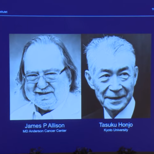 Cancer immunotherapy researchers awarded 2018 Nobel Prize in Medicine