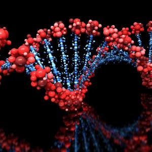 Chronic pain, depression, CVD share genetic links