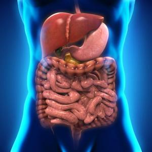 Implementation of Functional Gastrointestinal Disorders Guideline and GidiApp (ID) in Clinical Practice