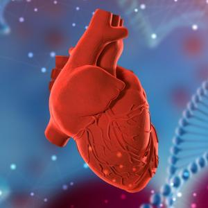 Cardiac evaluation of relatives and post-mortem sequencing recommended for young SCD victims