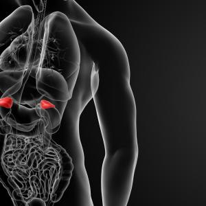 Target organ damage more pronounced in patients with primary aldosteronism