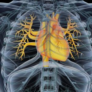 Pulmonary hypertension risk in CPFE linked to summed extents of ILD, emphysema