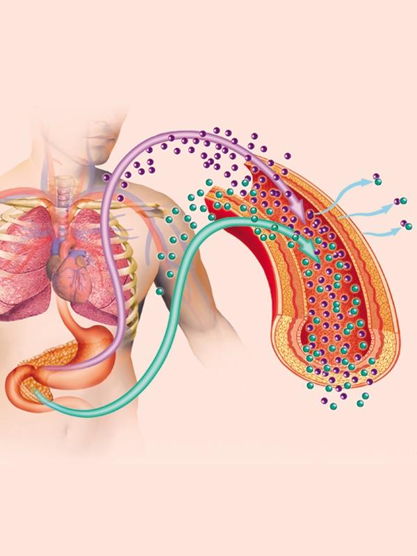 Diabetic Ketoacidosis & Hyperosmolar Hyperglycemic State